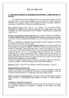 Identité et relation aux pairs – Texte de Salete Caldeira, psychologue